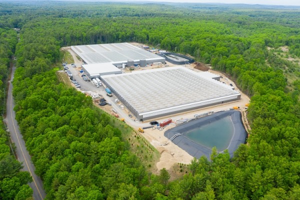 VB ready to double capacity for Little Leaf Farms
